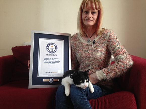 Najgłośniejszy kot - rekord Guinnessa