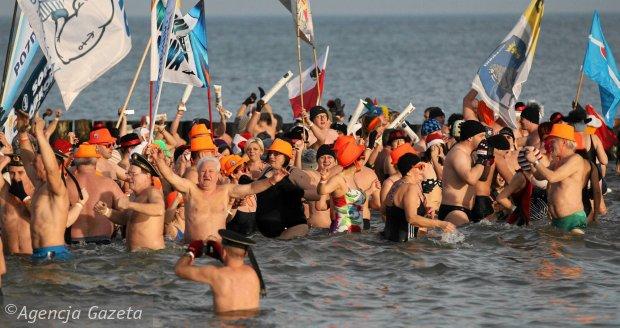 Największy zlot morsów wKołobrzegu