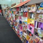 Największy domek dla lalek zkartonowych pudełek – rekord Polski