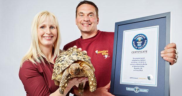Najszybszy żółw świata - rekord Guinessa