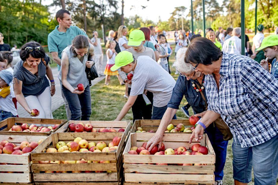 Najwięcej osób jedzących jabłka - rekord
