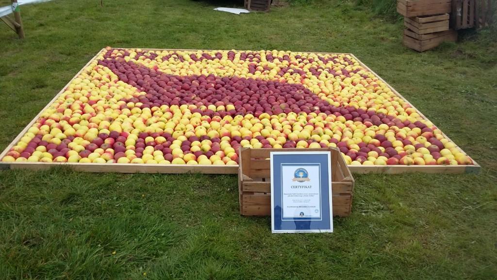 Święto Jabłka 2017 - największa mozaika zjabłek