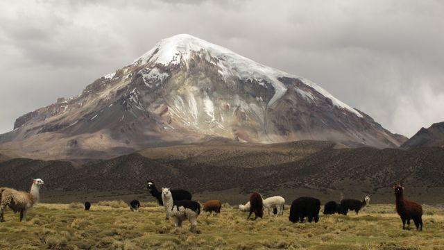 Wulkan Nevado Sajama