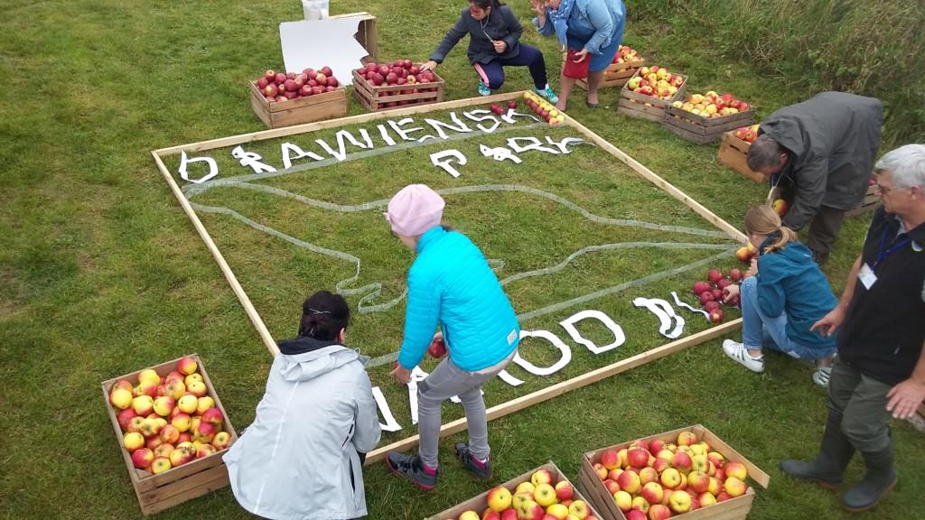 Początek pracy - największa mozaika zjabłek