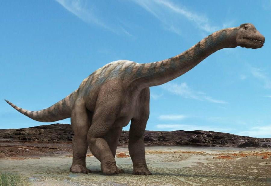 Amficelias - największy dinozaur