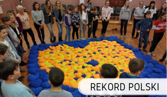 Mozaika z pluszowych poduszek - Rekord