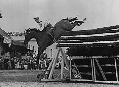 Najwyższy skok konia