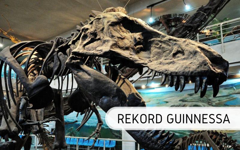 Rekord Guinnessa - największe muzeum dinozaurów
