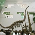 Największe muzeum dinozaurów