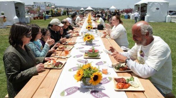 Najdłuższy stół piknikowy - rekord Guinessa
