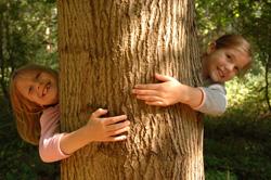 Akcja Przytul Drzewo