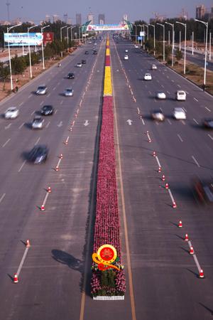 Najdłuższy dywan zkwiatów - rekord Guinessa