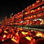 Największa wystawa lampionów z dyni