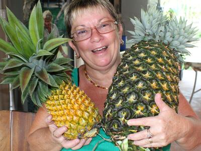 Najcięższy ananas świata - rekord Guinessa