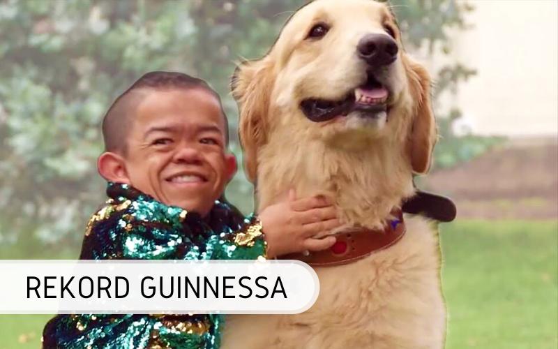 Rekord Guinnessa - najmniejszy człowiek świata