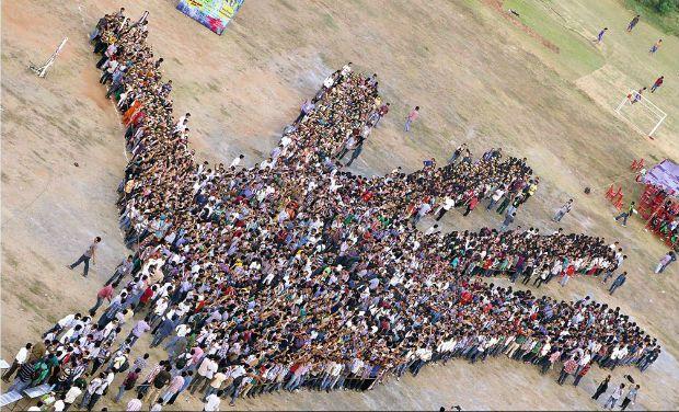 Największy obraz dłoni - rekord Guinessa