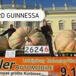 Najcięższa dynia - rekord Guinnessa