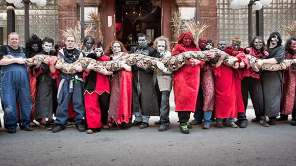 Najdłuższy wąż naświecie wniewoli