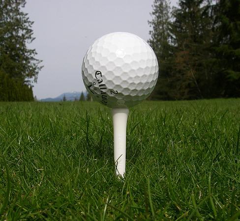 Największa podstawka pod piłkę golfową - rekord Guinessa