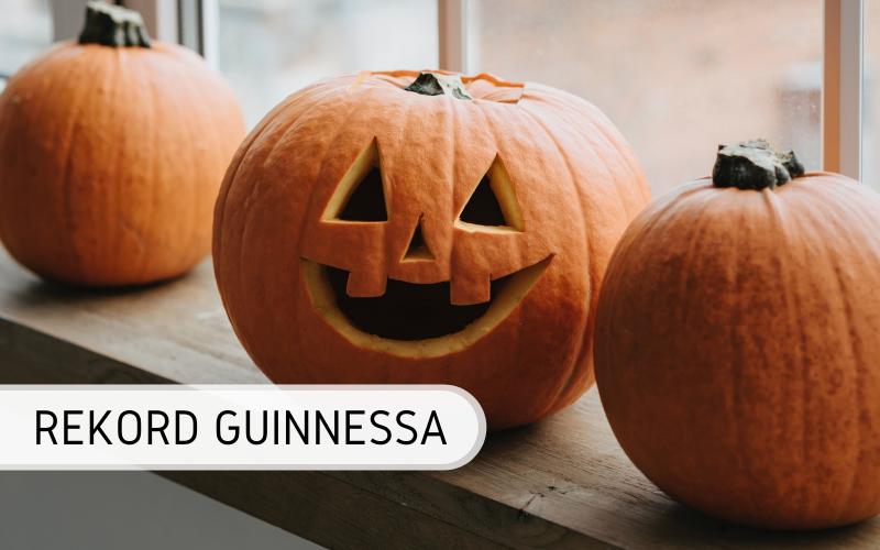 Rekord Guinnessa - najdłuższa linia z wyciętych dyń