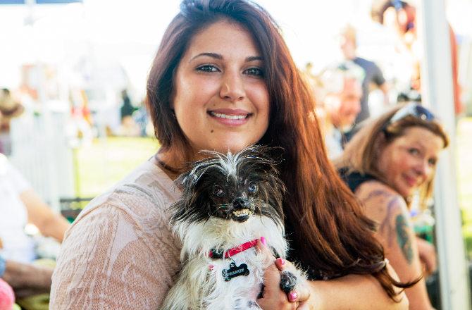 Najbrzydszy pies konkurs 2014
