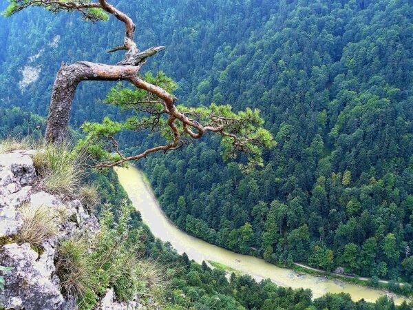 Najstarszy Park Narodowy wPolsce