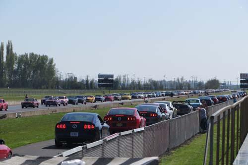 Największa parada Fordów Mustangów - rekord Guinessa