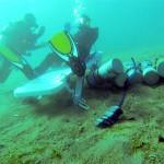 Najdłuższe nurkowanie