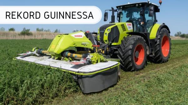 Guinness - trawa