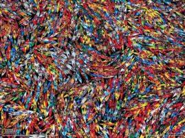 Największe zgromadzenie kajaków i canoe