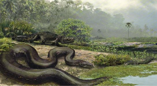 Największy wąż świata - titanoboa