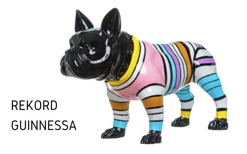 rekord Guinnessa - największa kolekcja przedmiotów z psami
