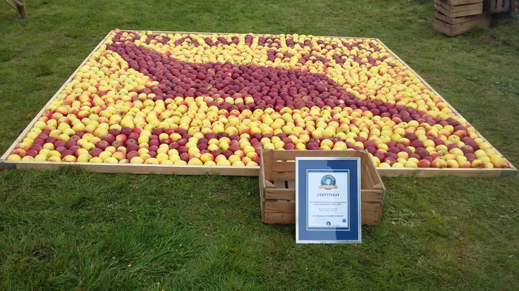 Największa mozaika zjabłek