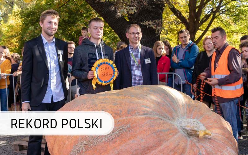 Rekord Polski - najcięższa dynia