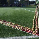 Najdłuższa linia z jabłek - Rekord Polski