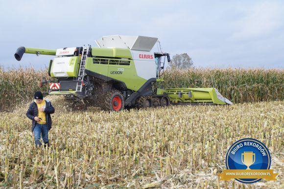 Największy plon kukurydzy - rekord