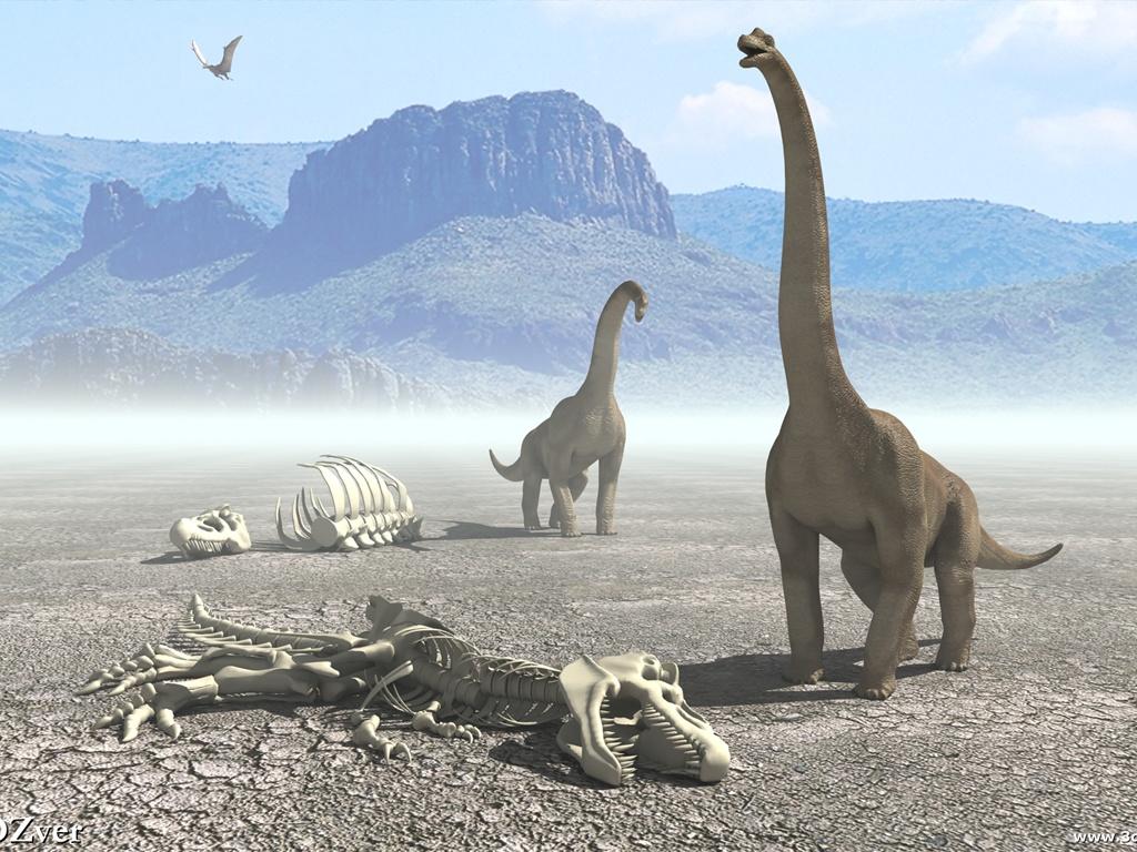Największy dinozaur odkryty