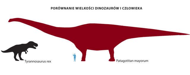 Porównanie wielkości dinozaura iczłowieka