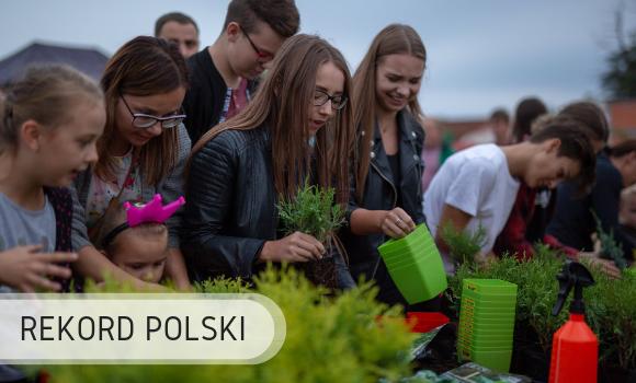 Rekord Polski - sadzenie roślin