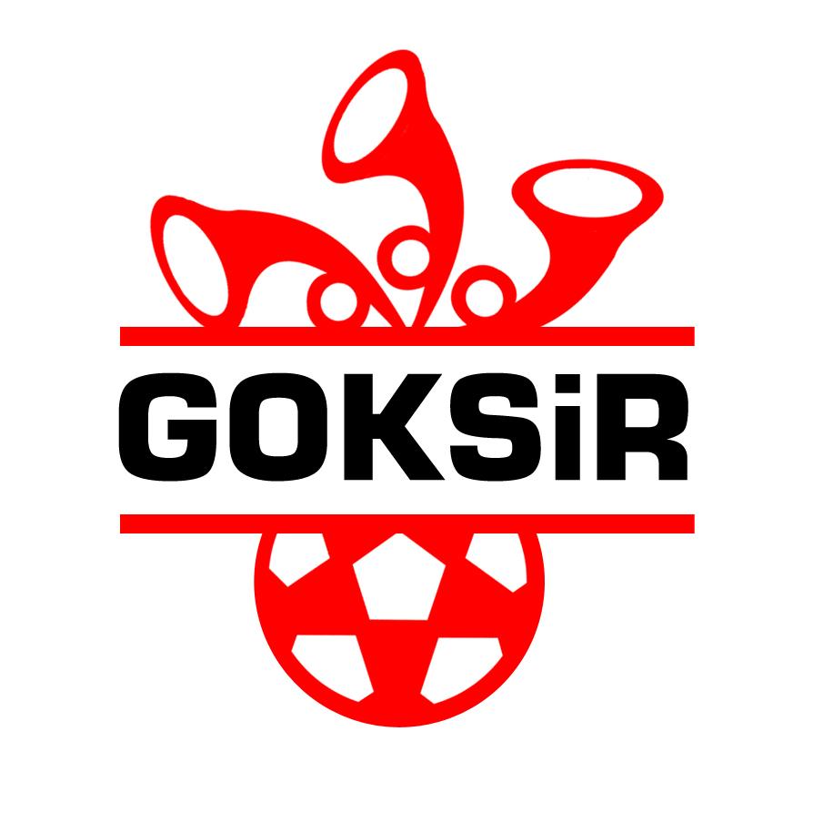 GOKSiR