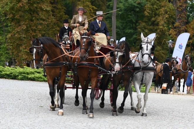 koszęcin-konie