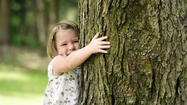 Tulenie drzew
