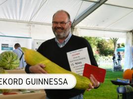 Rekord Guinnessa - ogórek