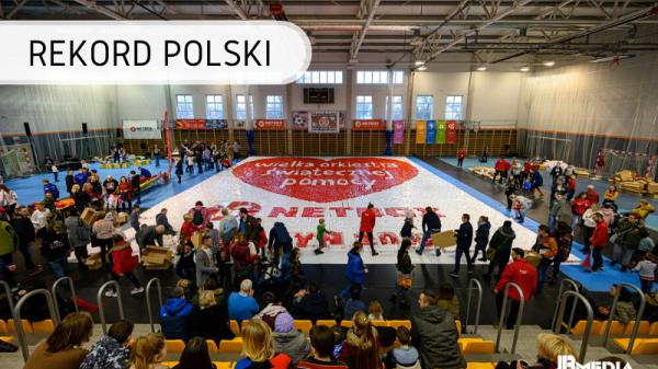 Rekord Polski - mozaika z kartonowych pudełek
