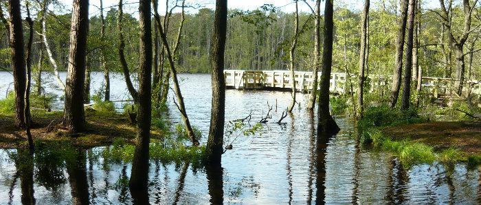 Najpłytsze jezioro - rekord