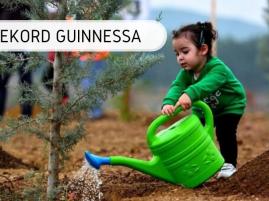 Najwięcej drzew posadzonych w godzinę przez grupę osób