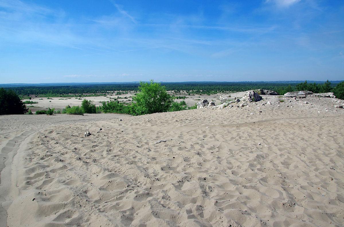 Największa pustynia wPolsce - rekord