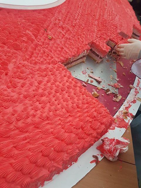 Tort malinowy - największy - rekord