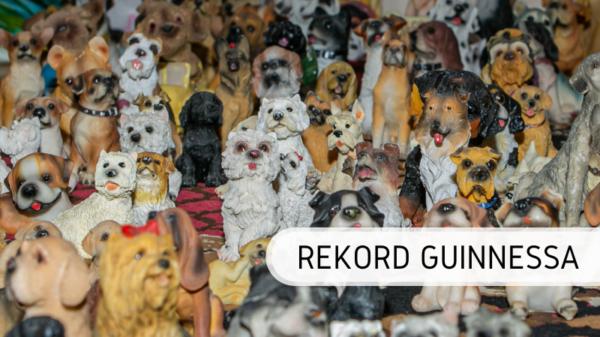 rekord-guinnessa-kolekcja-przedmiotów-z-psami