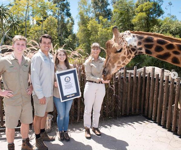 Najwyższa żyrafa świata